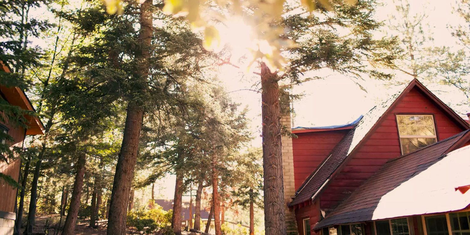 8 Cozy Cabins For Plotting Your Winter Escape