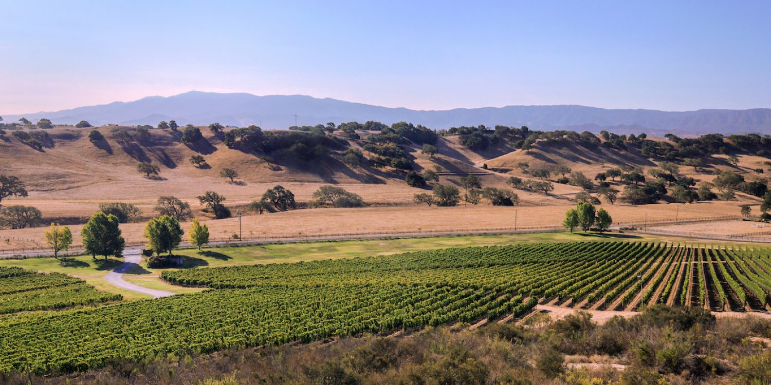 Forget Napa: Head to Santa Barbara Wine Country for Your Next Wine Tasting Trip