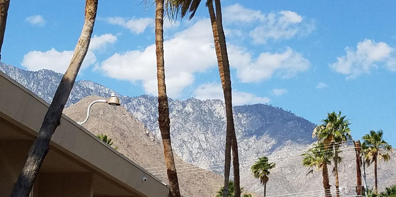 The Ultimate Palm Springs Getaway Guide
