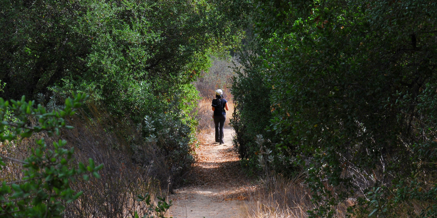 The 11 Most Haunted Hiking Trails in and Around Los Angeles