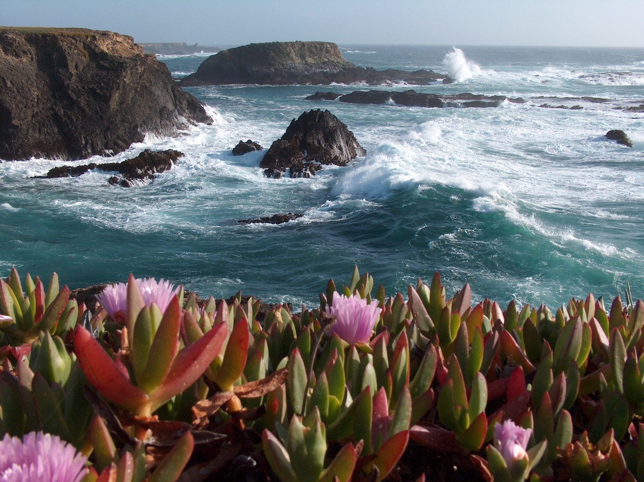 Two Beautiful Northern California Beach Towns with Totally