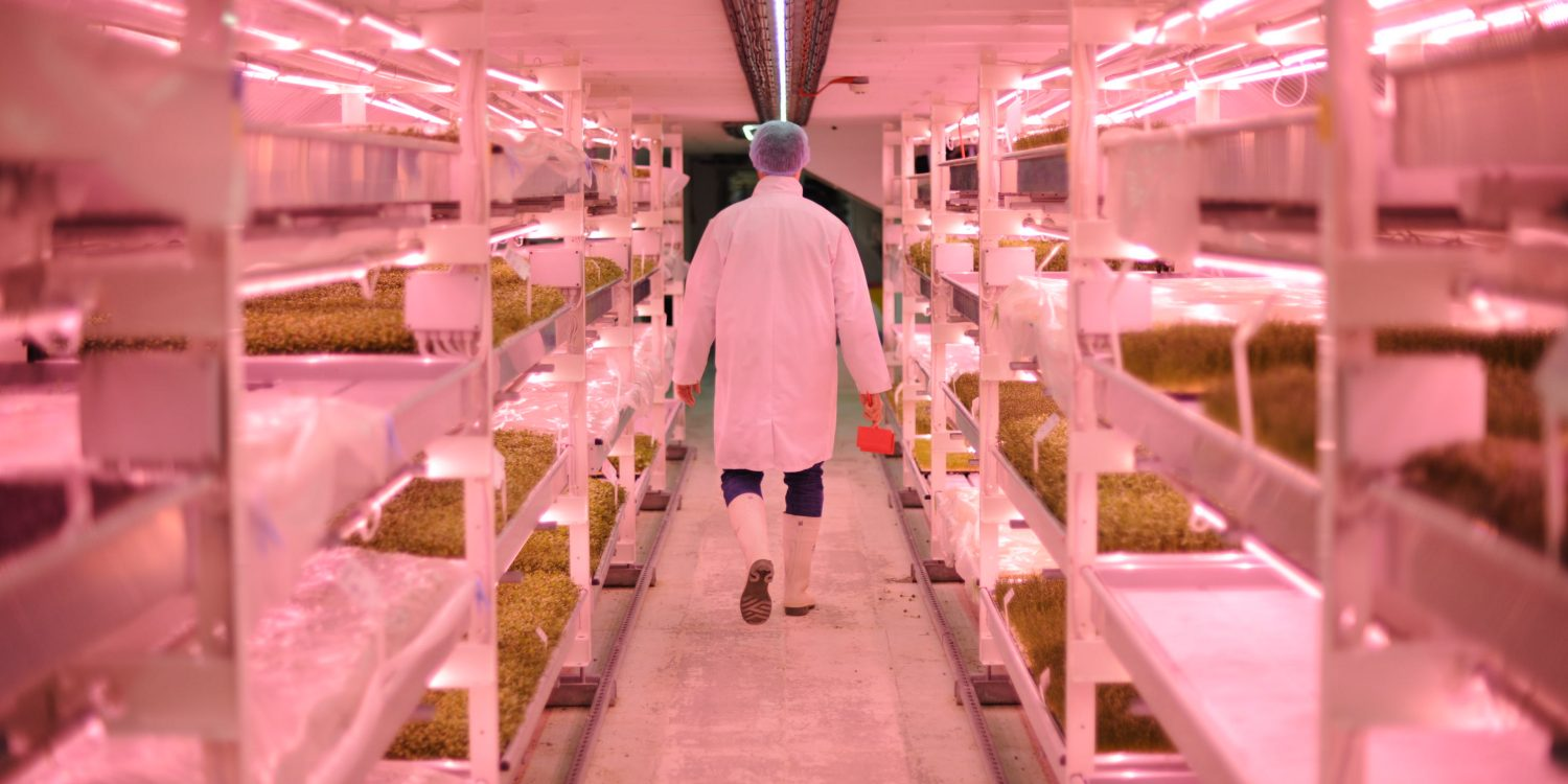 The World's First Underground Farm Finally Opens for Tours
