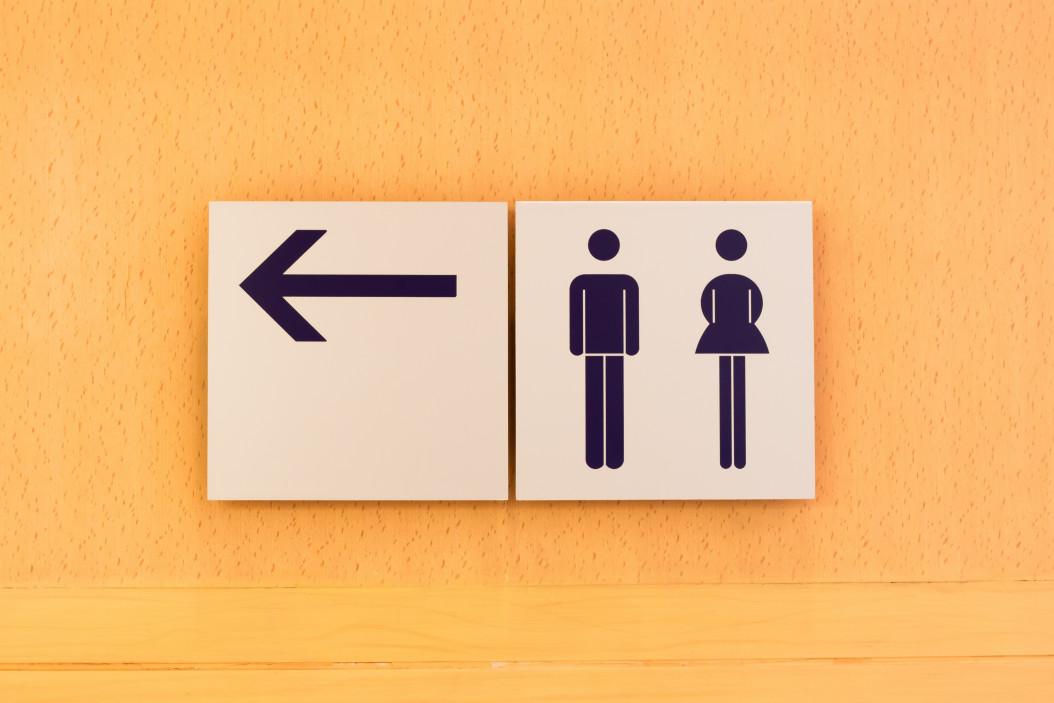 Wie-viele-Toiletten-pro-Gast