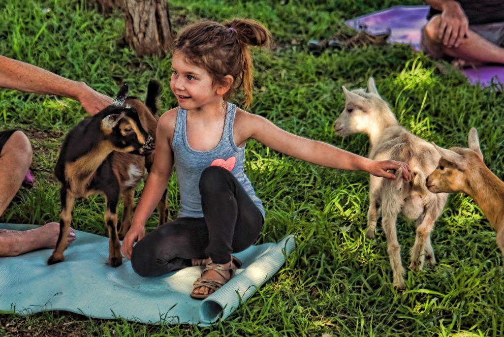 Ziegen-Yoga