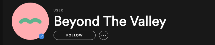 Beyond the Valley Spotify
