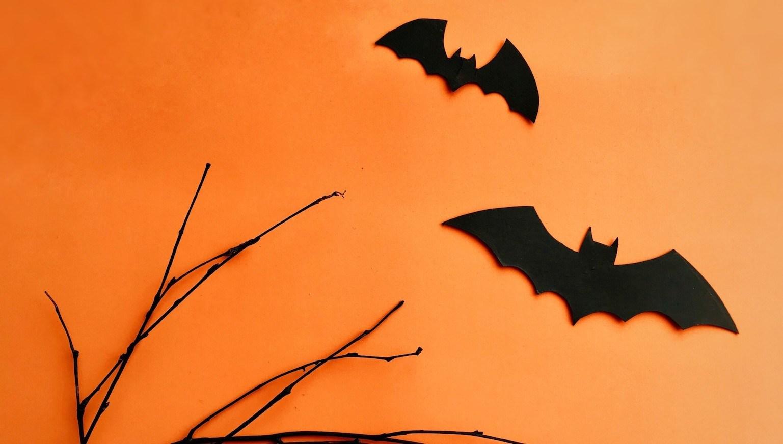 dicas para organizar o evento de Halloween