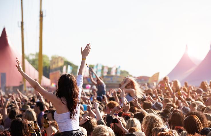 festival business plan