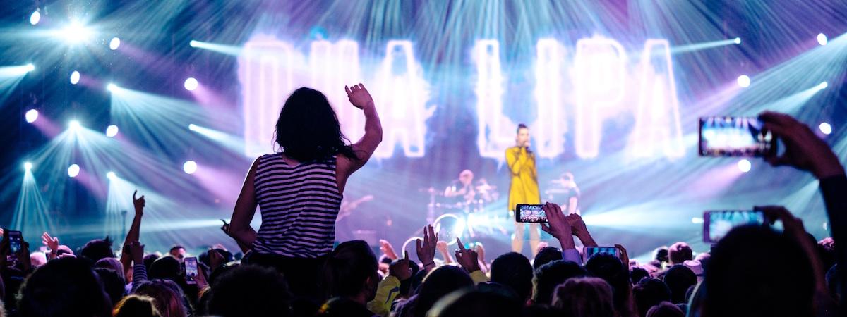 music festival statistics