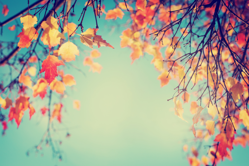 6 autumn themes for your next event eventbrite uk blog